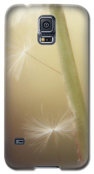 Galaxy S5 Case featuring the photograph A Wish And A Prayer by Amy Tyler