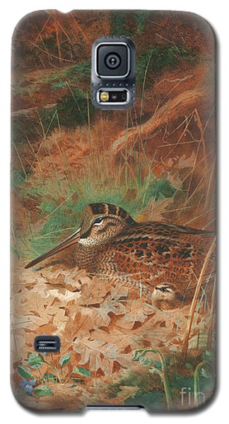 A Woodcock And Chick In Undergrowth Galaxy S5 Case by Archibald Thorburn