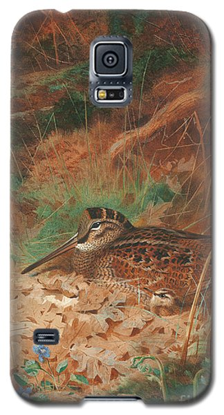 A Woodcock And Chick In Undergrowth Galaxy S5 Case