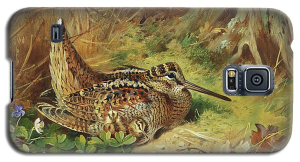 A Woodcock And Chicks Galaxy S5 Case by Archibald Thorburn