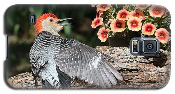 A Woodpecker Conversation Galaxy S5 Case