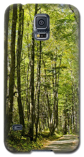 A Woodsy Trail Galaxy S5 Case