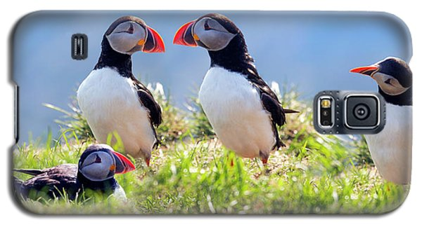 A World Of Puffins Galaxy S5 Case