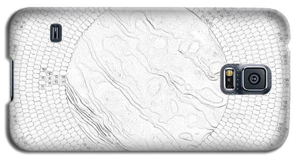 Abalone Shell Turtle Galaxy S5 Case