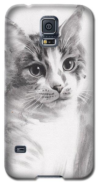 Abbie Galaxy S5 Case by Paul Davenport