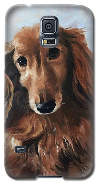 Abby Galaxy S5 Case by Diane Daigle