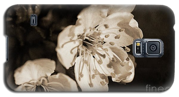 Galaxy S5 Case featuring the photograph Abiding Elegance by Linda Lees