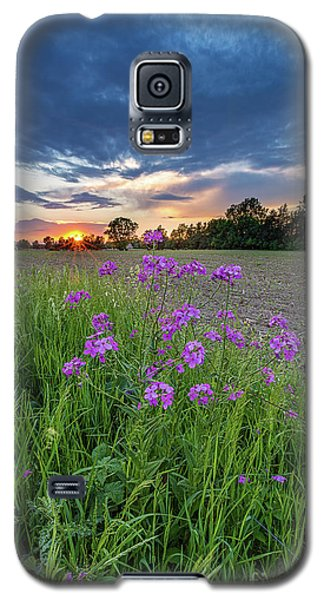 Above It All Galaxy S5 Case