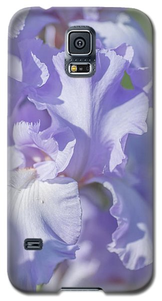 Absolute Treasure Closeup 2. The Beauty Of Irises Galaxy S5 Case