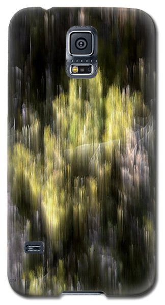 Galaxy S5 Case featuring the photograph Abstract 3317 In The Forest by Kae Cheatham