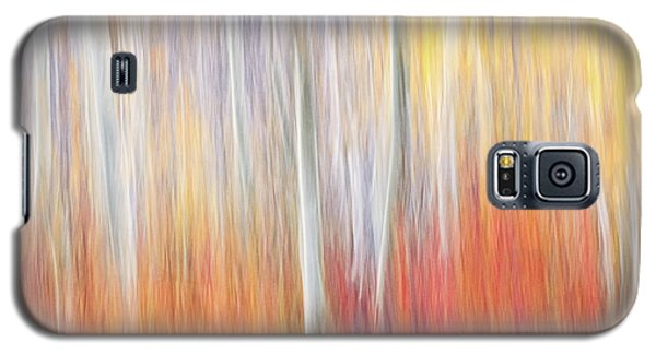 Abstract Autumn Galaxy S5 Case