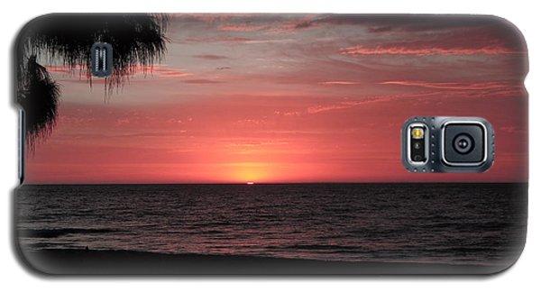 Abstract Beach Palm Tree Sunset Galaxy S5 Case