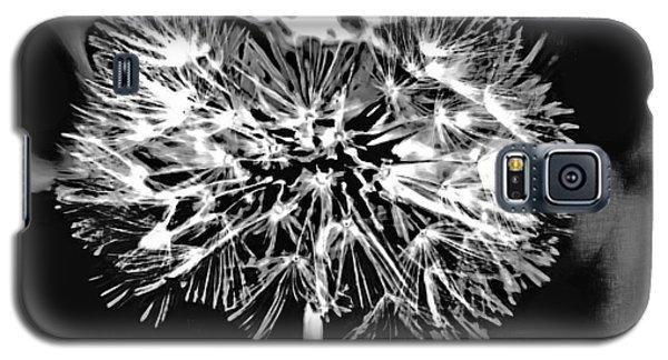 Abstract Dandelion Galaxy S5 Case