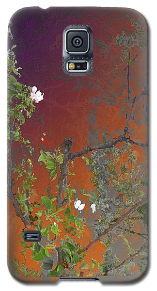Abstract Flowers Of Light Series #13 Galaxy S5 Case