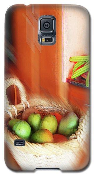 Abstract Fruit Art   100 Galaxy S5 Case