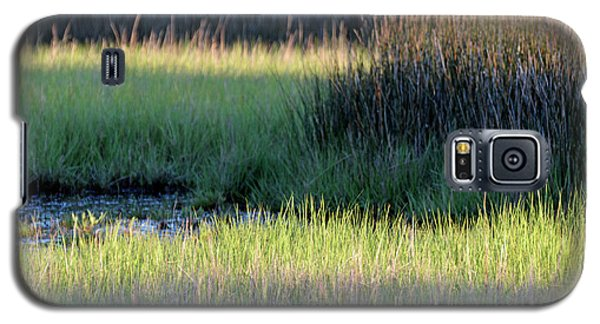 Galaxy S5 Case featuring the photograph Abstract Marsh Grasses by Bruce Gourley