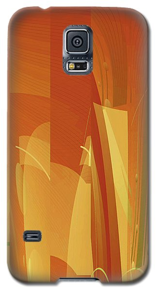Abstract No 34 Galaxy S5 Case by Robert G Kernodle