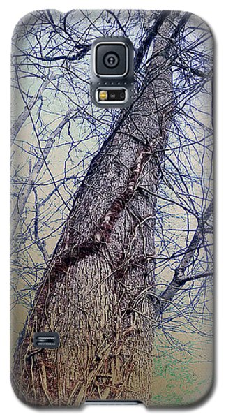 Abstract Tree Trunk Galaxy S5 Case