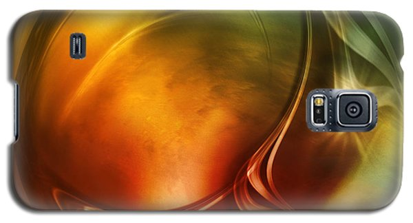 Abstract Whiskey Galaxy S5 Case