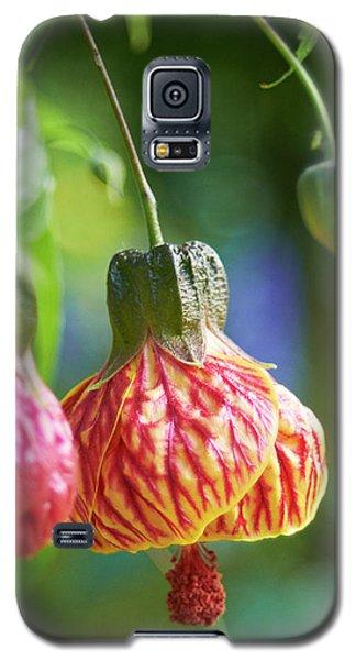 Abutilon Galaxy S5 Case