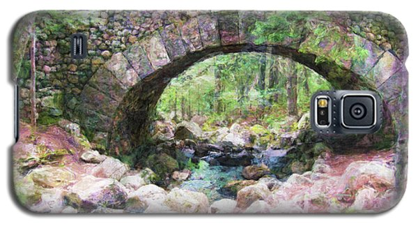Acadia National Park - Cobblestone Bridge Abstract Galaxy S5 Case