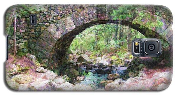 Acadia National Park - Cobblestone Bridge Abstract Galaxy S5 Case