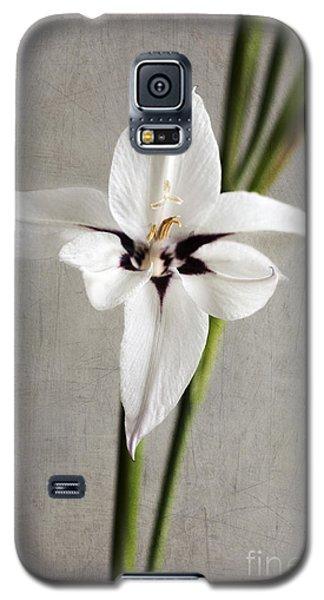 Acidanthera Galaxy S5 Case