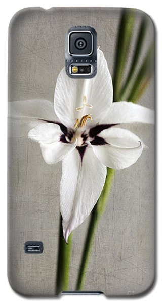 Acidanthera Galaxy S5 Case