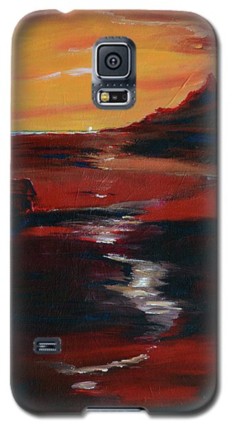 Across Amber Fields To The Sea Galaxy S5 Case by Donna Blackhall