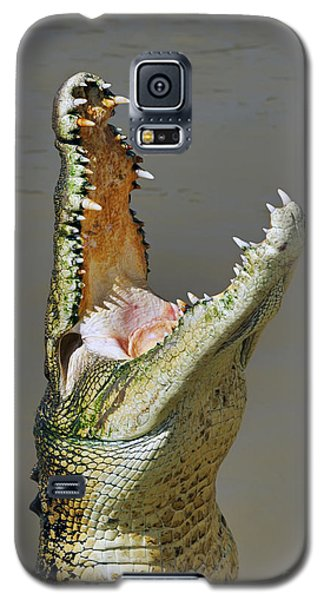 Adelaide River Crocodile Galaxy S5 Case by Bill  Robinson