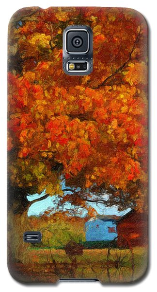 Adirondack Autumn Color Brush Galaxy S5 Case