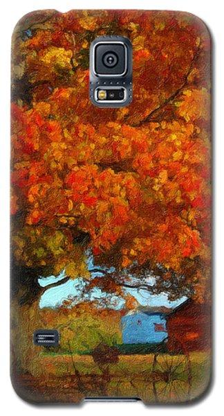 Adirondack Autumn Color Brush Galaxy S5 Case by Diane E Berry