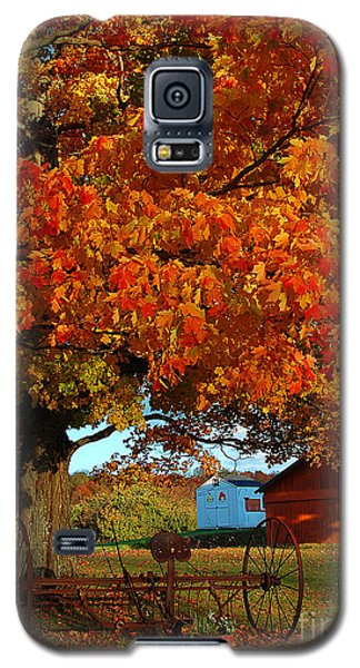 Galaxy S5 Case featuring the photograph Adirondack Autumn Color by Diane E Berry