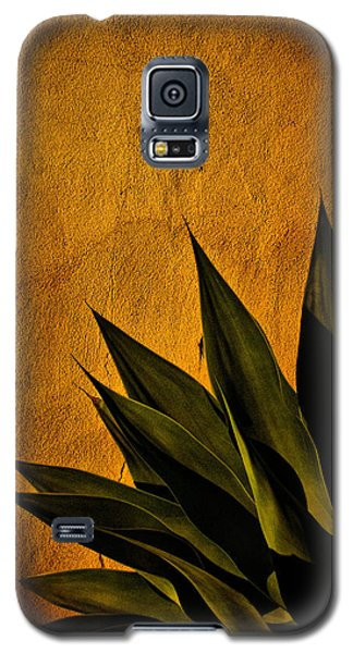 Adobe And Agave At Sundown Galaxy S5 Case