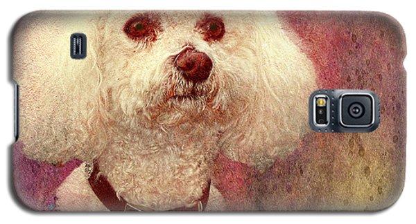 Adoration - Portrait Of A Bichon Frise  Galaxy S5 Case