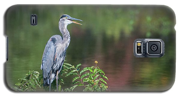 Advice From A Great Blue Heron Galaxy S5 Case