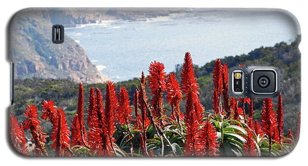 African Aloe And False Bay Galaxy S5 Case