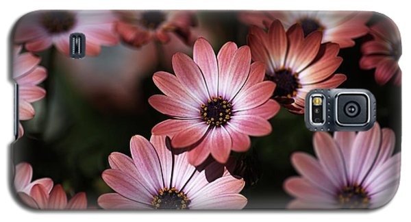 African Daisy Zion Red Galaxy S5 Case