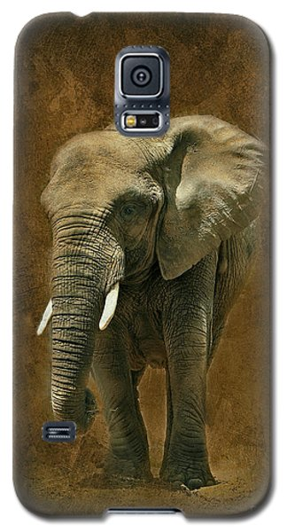 African Elephant With Textures Galaxy S5 Case