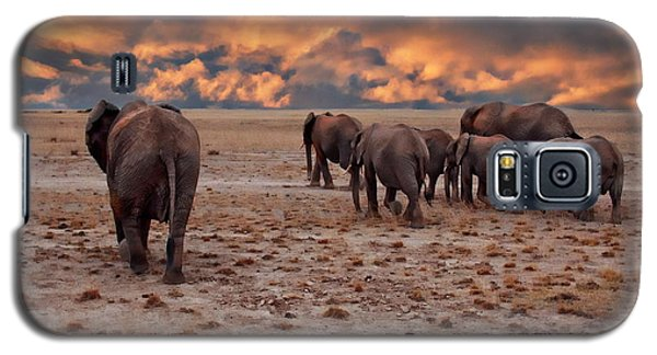 African Elephants Galaxy S5 Case