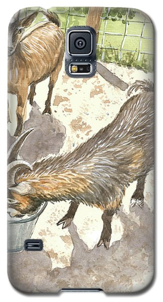 African Goats Galaxy S5 Case