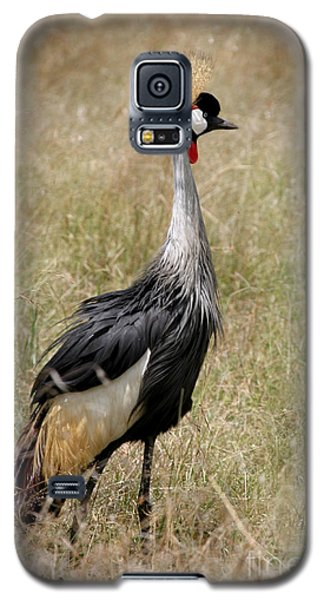 African Grey Crowned Crane Galaxy S5 Case