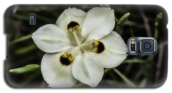 African Iris Galaxy S5 Case