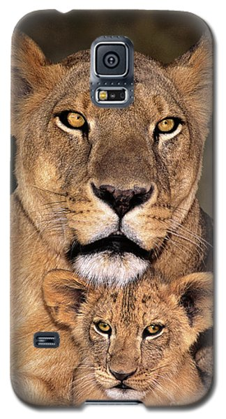 African Lions Parenthood Wildlife Rescue Galaxy S5 Case