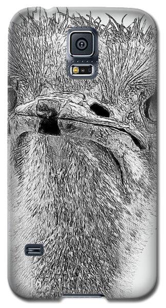 African Ostrich Sketch Galaxy S5 Case