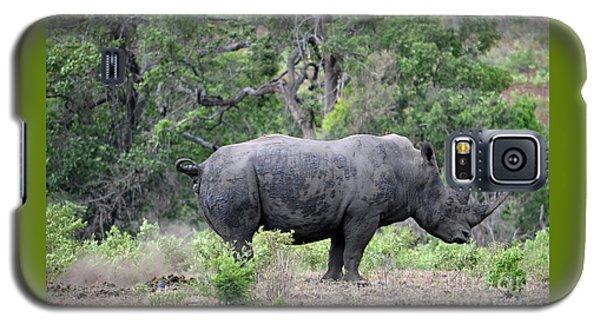 African Safari Naughty Rhino Galaxy S5 Case