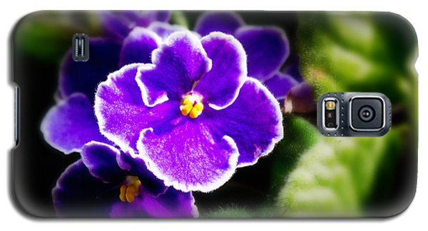 African Violet Galaxy S5 Case