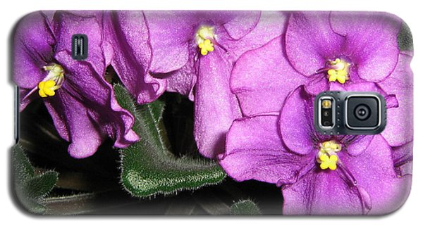 Galaxy S5 Case featuring the photograph African Violets by Barbara Yearty