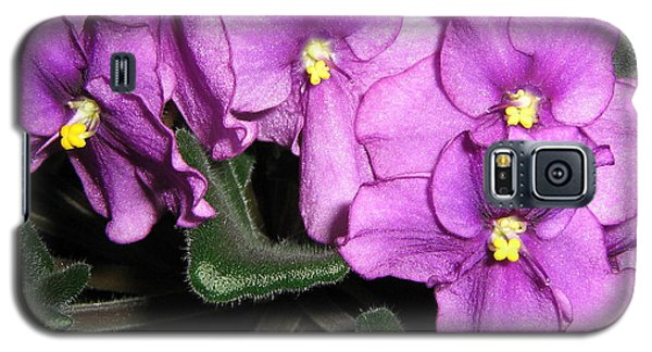 African Violets Galaxy S5 Case by Barbara Yearty