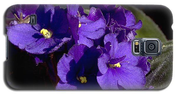Galaxy S5 Case featuring the photograph African Violets by Phyllis Denton